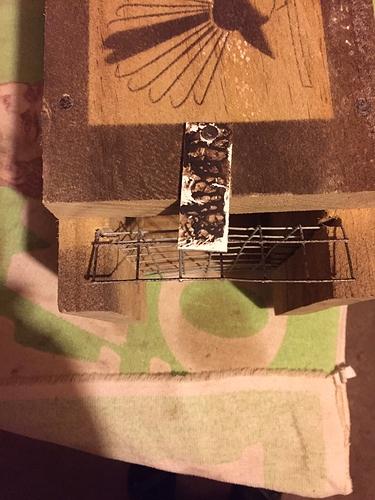 trap catch 2